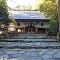 写真: 椿大神社(三重県鈴鹿市)