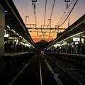 写真: 千歳烏山駅から望む富士山