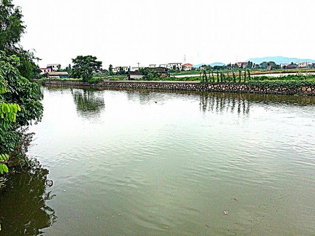 中山の小規模河川