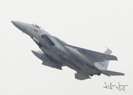 F-15J下面2L