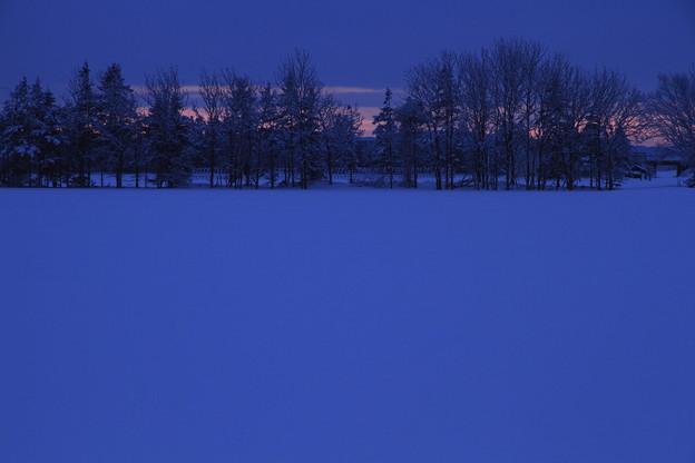 青い雪のあるところ