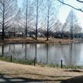 Photos: 川越水上公園の池