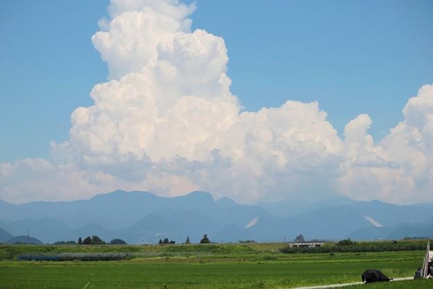 夏の雲・・・田んぼと山に乗って