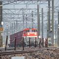 Photos: DE10-1719牽引955レ vol.1