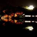 写真: 玄宮園の夜