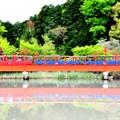 Live Steam~紅い橋~