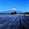 写真: Mt.Fuji of January ~Tanukiko Side ~