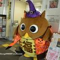 Photos: 0140 かぼちゃまつりPart2