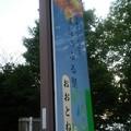 【5月24日の画像その7】道の駅童謡のふる里おおとねにて。