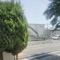 写真: 【5月13日は幸手市へ2】来た方向