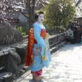 祇園白川で舞妓さんの撮影会1