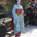 祇園白川で舞妓さんの撮影会3