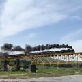 Photos: 蒸気機関車
