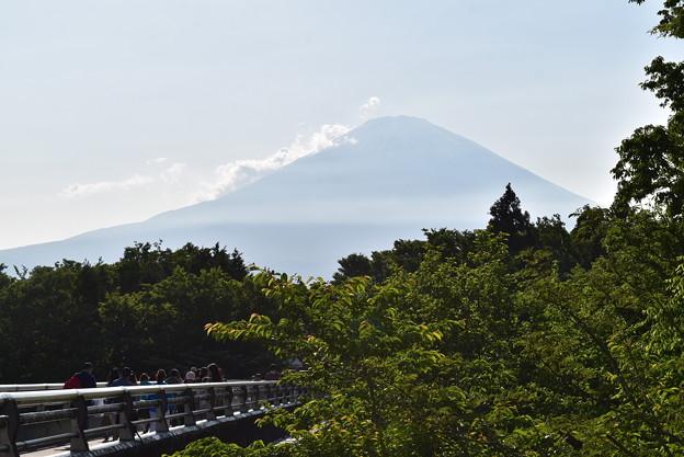 雄大な富士山の眺め