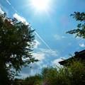 Photos: 京都の夏