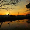 写真: 神池からの夕景@亀岡 出雲大神宮