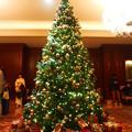 ザ・リッツ・カールトン大阪クリスマスツリー