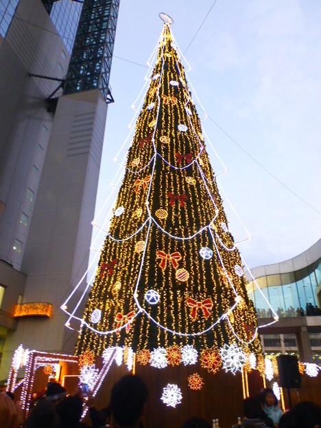 高さ27mの新梅田シティ・クリスマスツリー