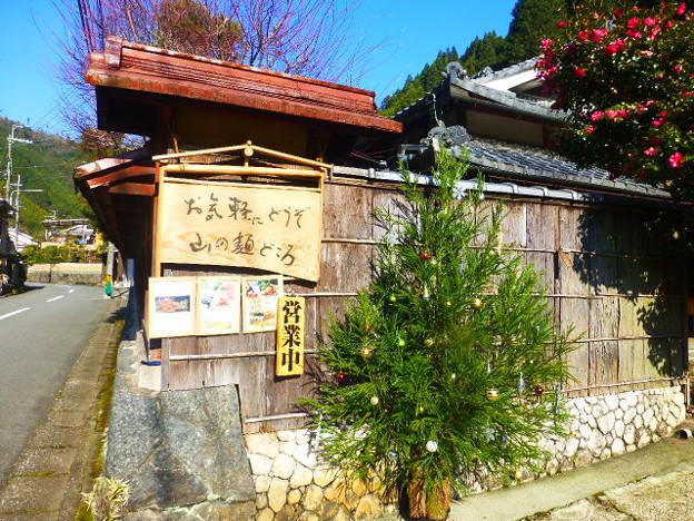 杉のクリスマスツリーが飾られた山の麺処@北山 中川