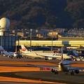 写真: 伊丹空港滑走路