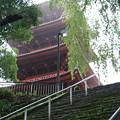 Photos: 五重塔がお出迎え