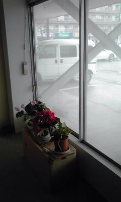 暖かい雨で窓の外側が結露し...
