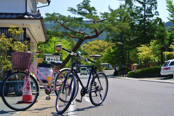 京都らしい街並みを求めて走り回る