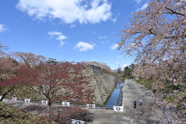 石垣補修のために弘前城の天守閣は不在中