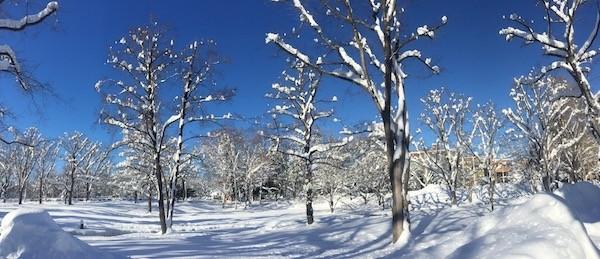 50年振りの大雪明けの12月24日の札幌は快晴