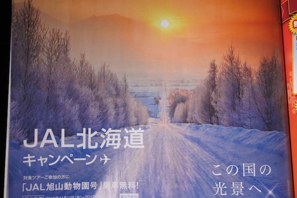 JAL機内誌にあった富良野の雪景色