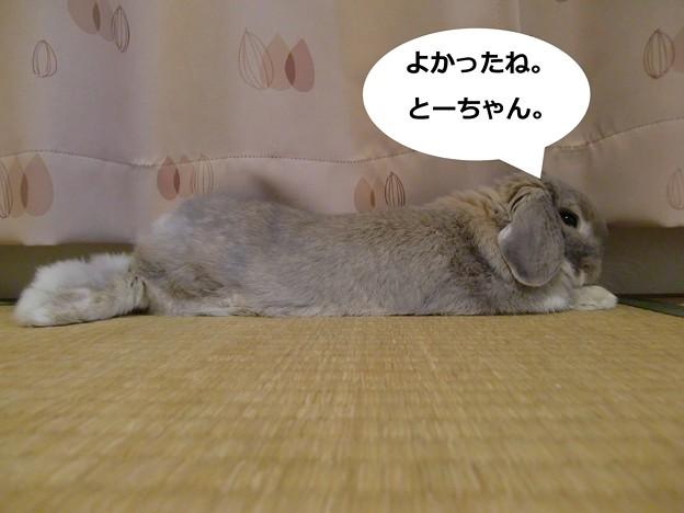 Photos: い4