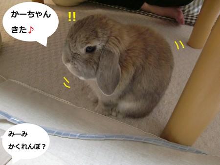 甘えっこ1