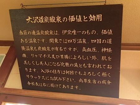 28 6 伊豆 大沢温泉 露天風呂山の家 3