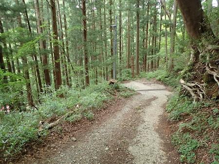 栃木 赤滝鉱泉