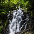 新緑の白糸の滝♪