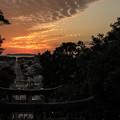 Photos: 光の道♪4