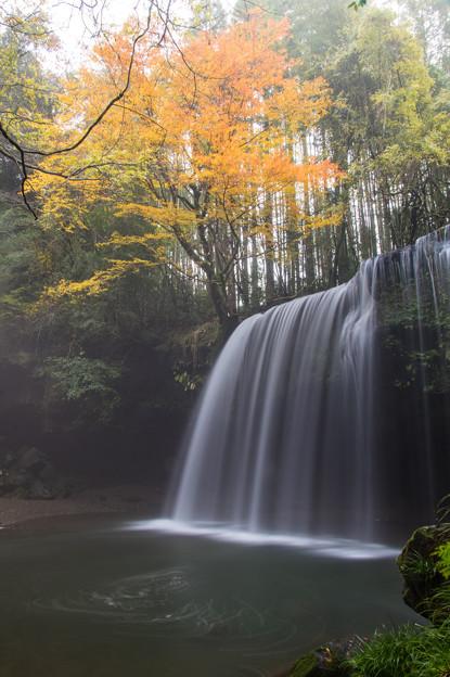 朝靄の鍋ヶ滝♪