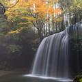 写真: 朝靄の鍋ヶ滝♪