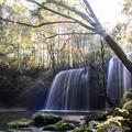 写真: 朝靄の鍋ヶ滝♪4
