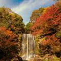 写真: 秋の遊水峡♪