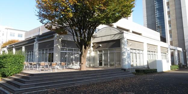 立教大学新座学生食堂「Forest」