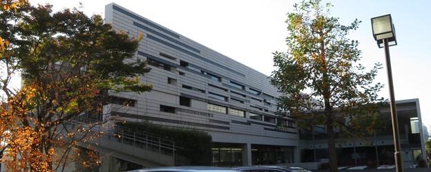 立教大学 ユリの木ホール