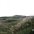 塩塚高原1