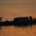 トレサップ川の朝漁