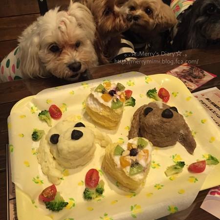 ワンケーキ