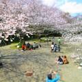 日立市・熊野神社