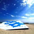 写真: 茨城県北芸術祭 255  高戸海岸