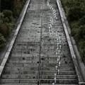 茨城県北芸術祭 488  百段階段