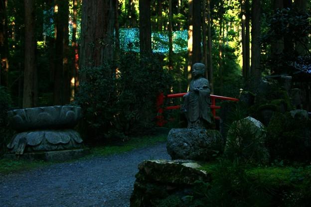 Photos: 茨城県北芸術祭 354  御岩神社