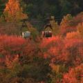 写真: 556 助川山 架空索道 日立市